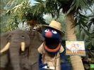Sesame Street Grover and the Elephant Hollywoodedge, Bird Parrot VariousS PE021301-1