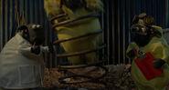 Shaun the Sheep Movie BOING, CARTOON - HOYT'S BOING,