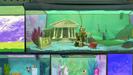 "Fish Hooks WILHELM SCREAM in ""Queen Bea"""