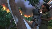 BanjoandtheBushfire93