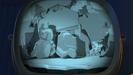 Toy Story 2 Sound Ideas, ZIP, CARTOON - QUICK SLIDE WHISTLE ZIP UP-1