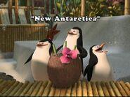 PenguinChat9