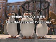 PenguinChat1