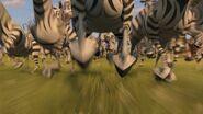 Madagascar 2 Screenshot 0768
