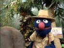 Sesame Street Grover and the Elephant Hollywoodedge, Bird Parrot VariousS PE021301-7