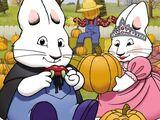 Perfect Pumpkin 2008 DVD/Gallery