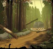 Track pic shrekswamp-1-