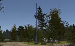 Tohvakka's mast.jpg