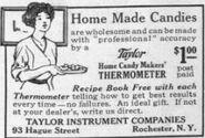 Taylorinstrument3