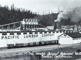Pacific Lumber Company