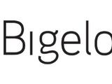 Bigelow-Sanford Carpet Company