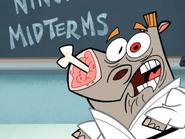Mr. Hornbill Gets Surprised