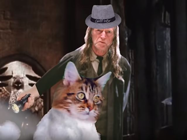 Mr. Norris and Filch the cat