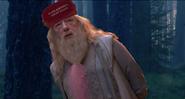 Dumbledore Film