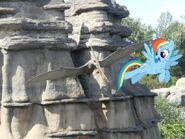 Rainbow Dash e lo pteranodonte