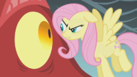 Fluttershy ep7 3.png