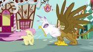 Gilda screams at Fluttershy