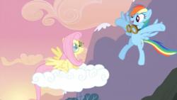 250px-Rainbow Dash congratulating Fluttershy S02E22.png