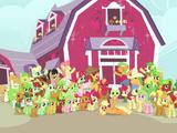 Famiglia Apple