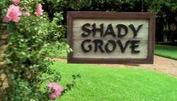 Shady Grove.jpg
