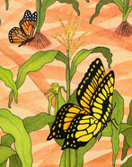 FeliciaBond-Butterflies