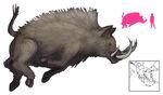 Erymanthian-boar