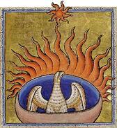 Phoenix detail from Aberdeen Bestiary 1