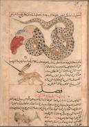 322px-Al-miraj and Serpent