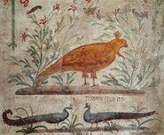Phoenix Pompeii Roman Wall Painting
