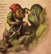 Gnome 15