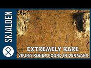 Extremely RARE Viking Runes Found in Denmark