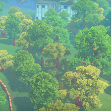 Tree Farm My Time At Portia Wiki Fandom