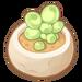 Succulent Plant.png