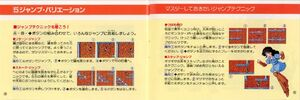 The Quest of Ki Japanese Manual (6)