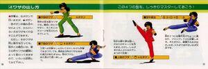 Tenkaichi Bushi Keru Naguuru Japanese Manual (7)