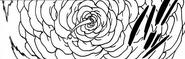 Vasquez Moon Rose