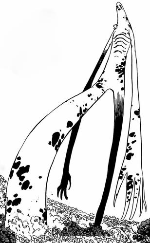 Manga (Tall)
