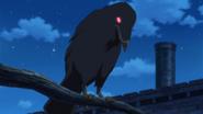Chimera Crow Anime