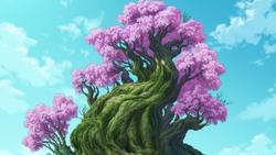 Sacred Tree.png