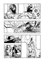 Иллюзии Вайнхайдта (Манга)