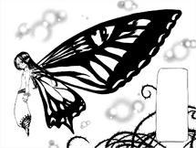 Gloxinia wings revealed