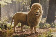 2767 aslan
