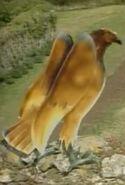 BBC Eagle