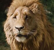 Aslan-profile