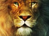 The Chronicles of Narnia: The Silver Chair (film)