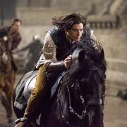 Caspian-horse.jpg