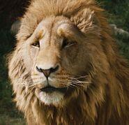 Aslan-headshot