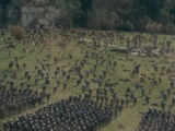 Second Battle of Beruna
