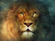 Aslan-Lion-The-Chronicles-of-Narnia-Wallpaper