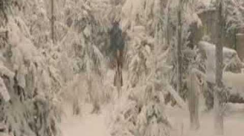 The Chronicles of Narnia Full Movie Part 2